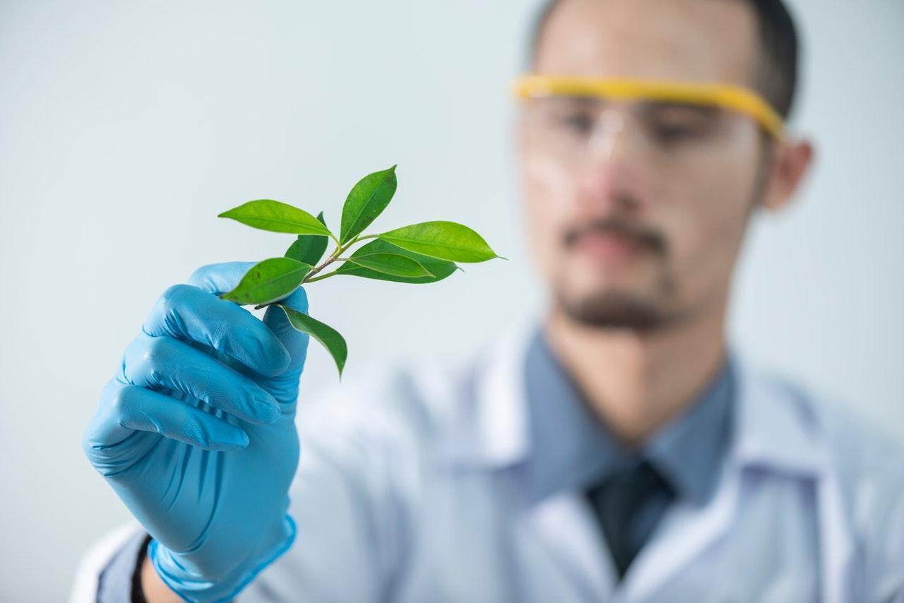 Miksi ympäristöjen suojelu on tärkeää?