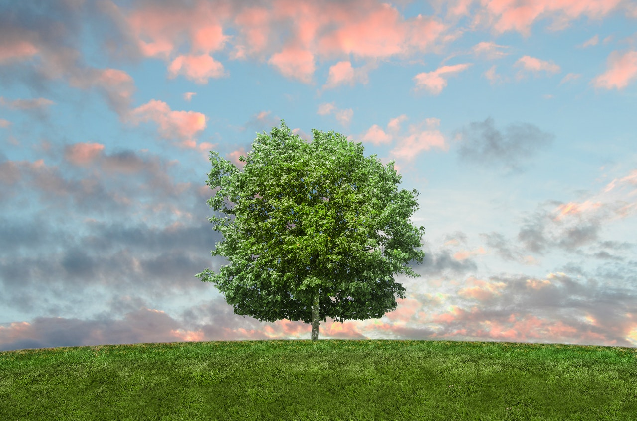 Mitä ympäristö tarkoittaa?