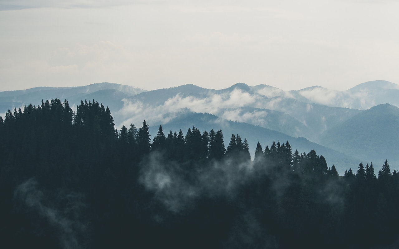 Metsät