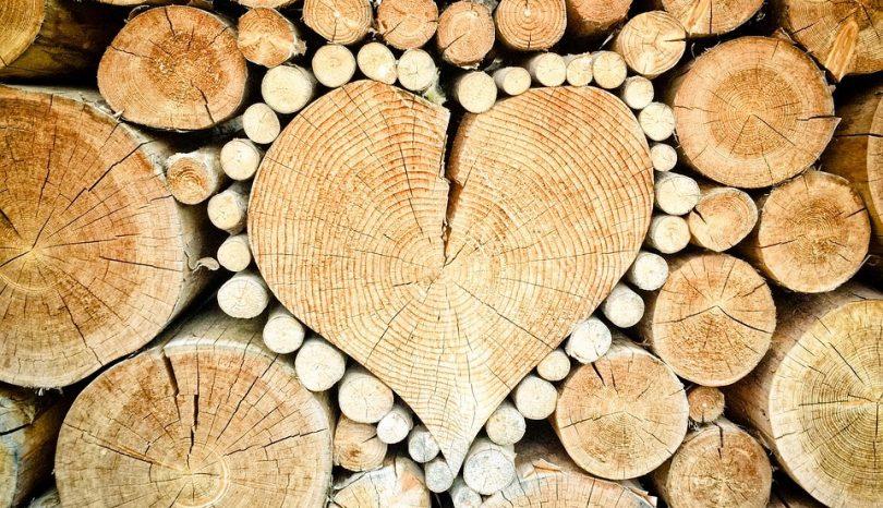 Puulla rakentaminen ympäristön näkökulmasta